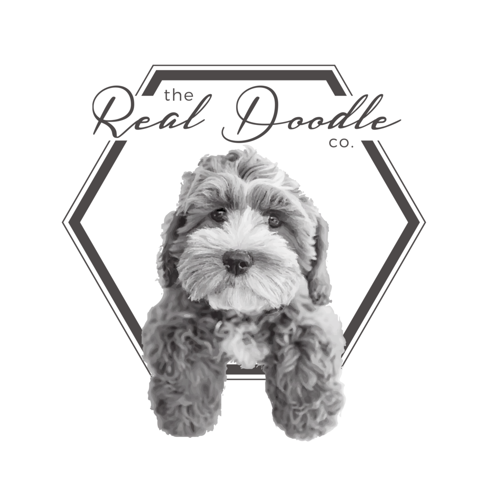 The Real Doodle Co