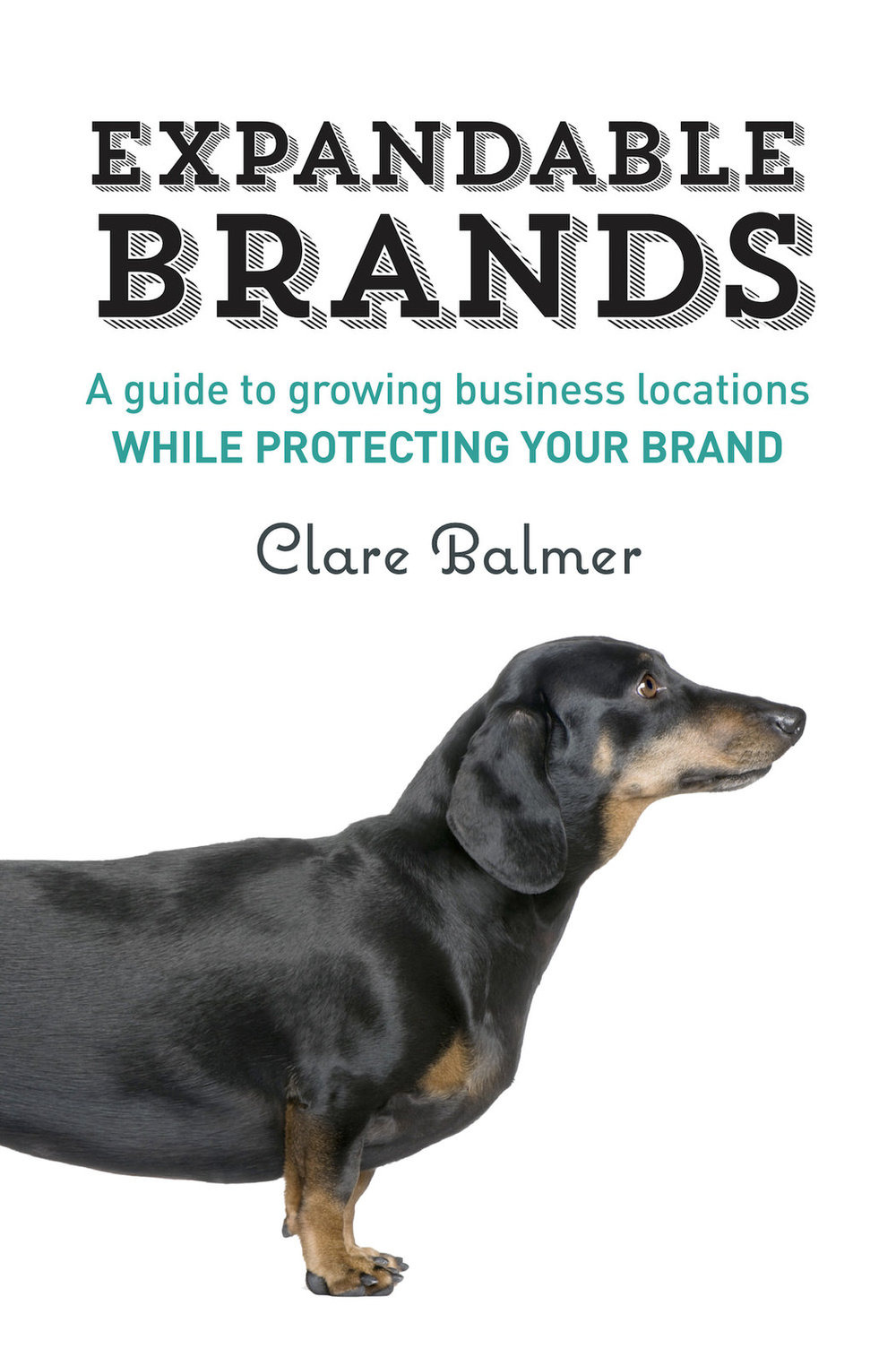 Clare-Balmer-Expandable-Brands.jpg