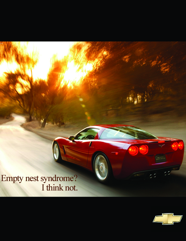 corvette_nest.jpg