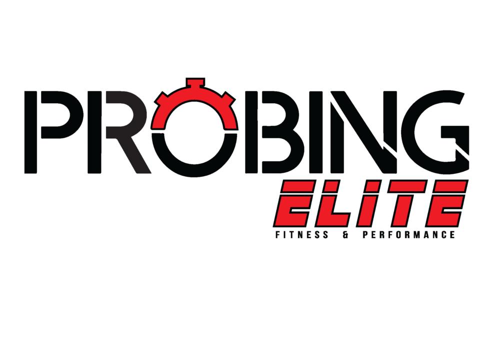 Probing Elite
