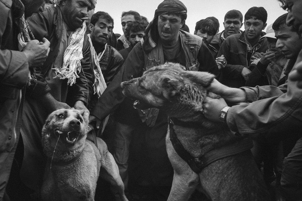 BG_afghanistan_06.jpg