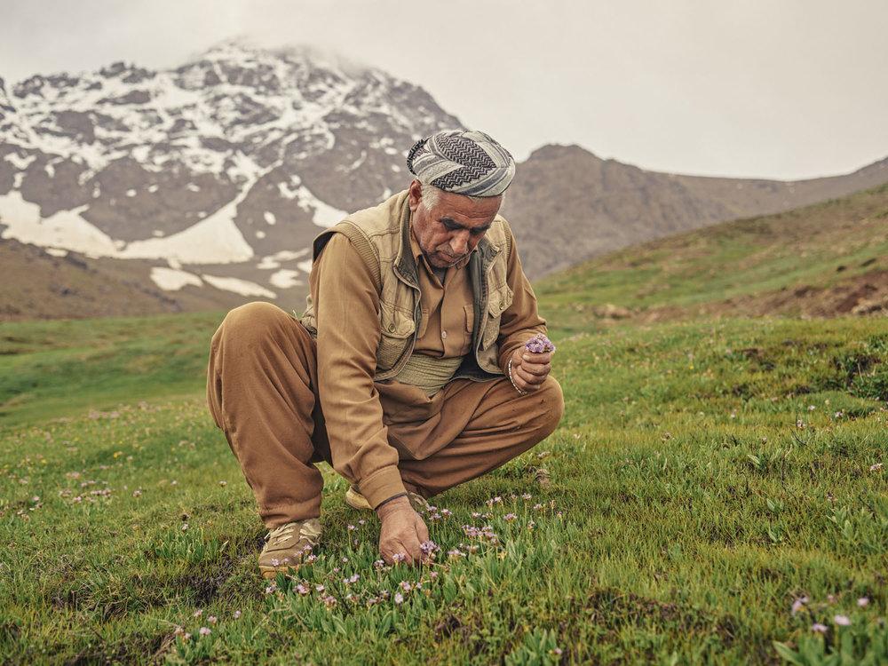 18_kurdiastan.jpg