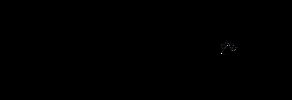 BADR Logo.png