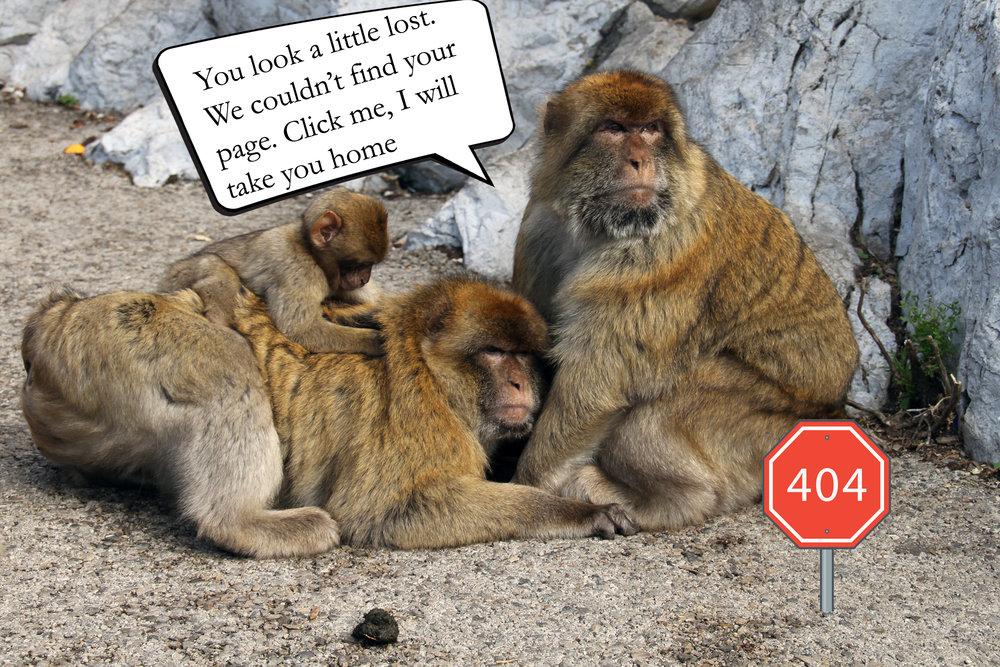 404-mariosuter.jpg