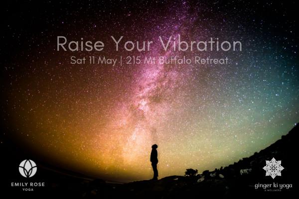 Raise your Vibration.png