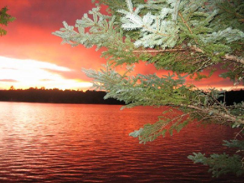 pink-pine-lake-photo-billy-marie.jpg