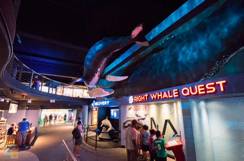 North Carolina Aquarium at Fort Fischer