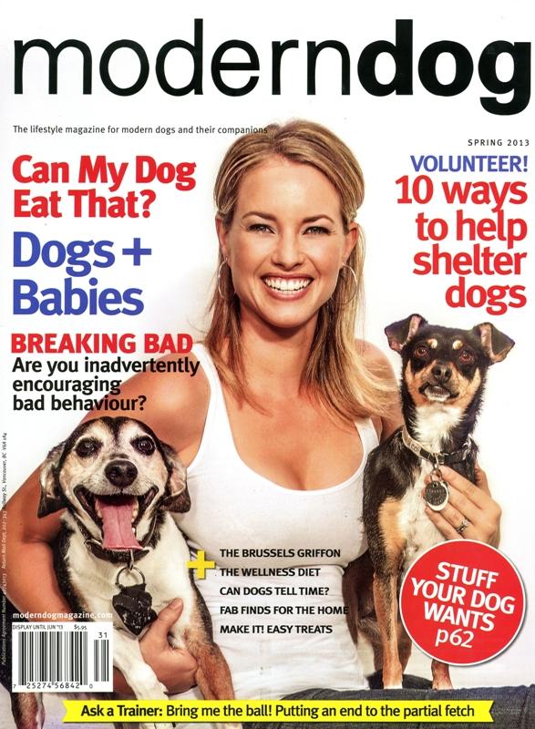 CSB MODERN DOG Cover.jpg