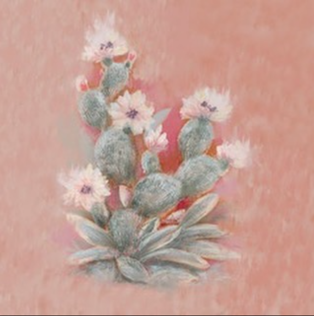 "BEAMS–""Cactus"""