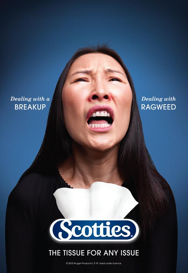 scotties_ragweed.jpg