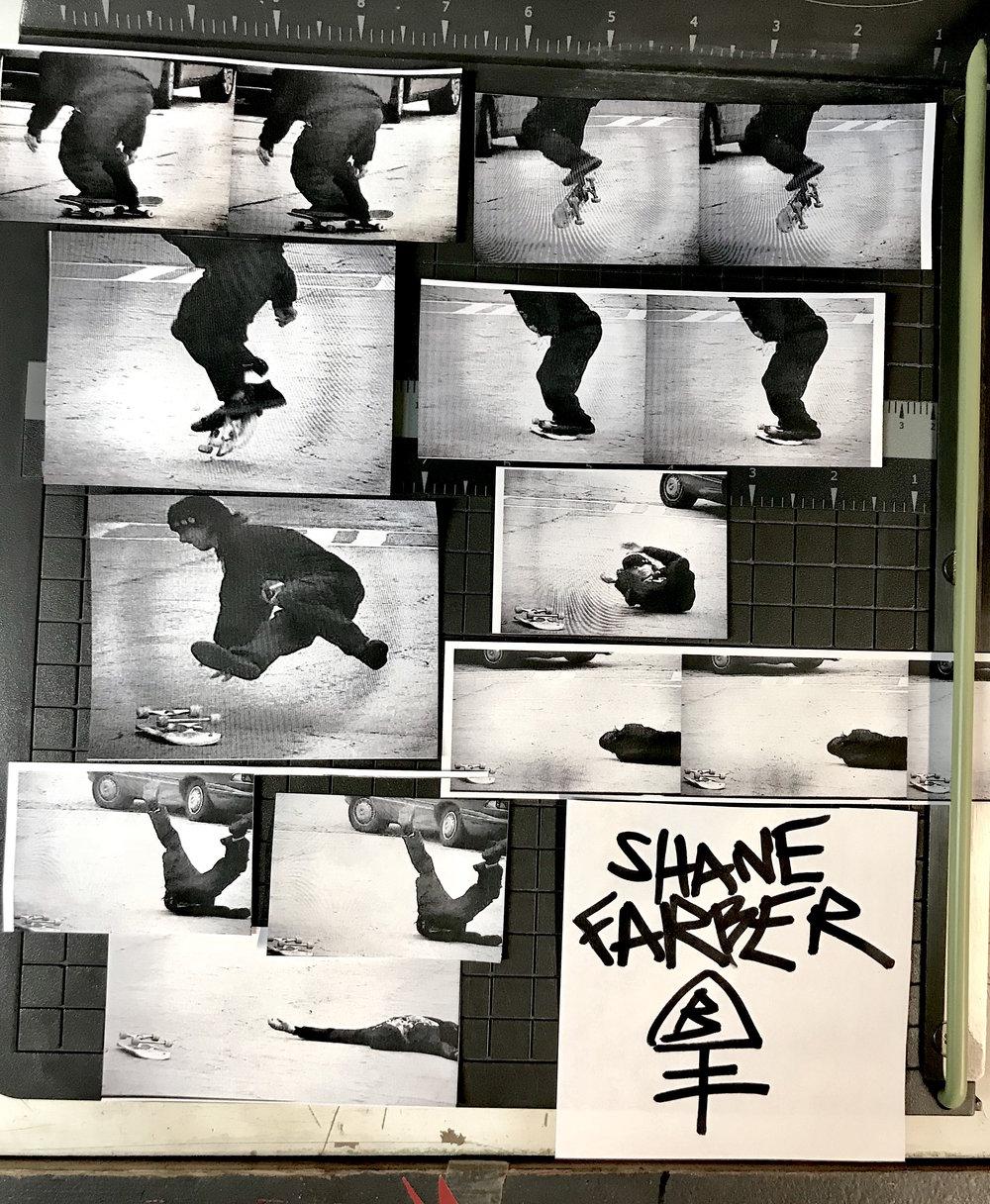 ShaneWebAd.jpg