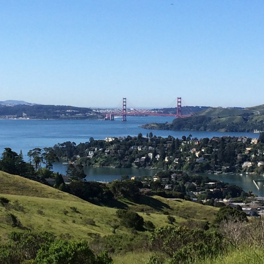 Head up to Old St. Hilary's Open Space Preserve for spectacular only-in-Tiburon views of the San Francisco Bay and the Golden Gate Bridge.