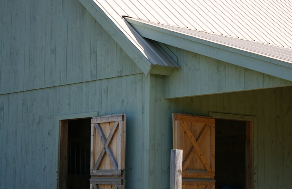 Paul Freeman - Reeve Doors and Shed Roof.jpg