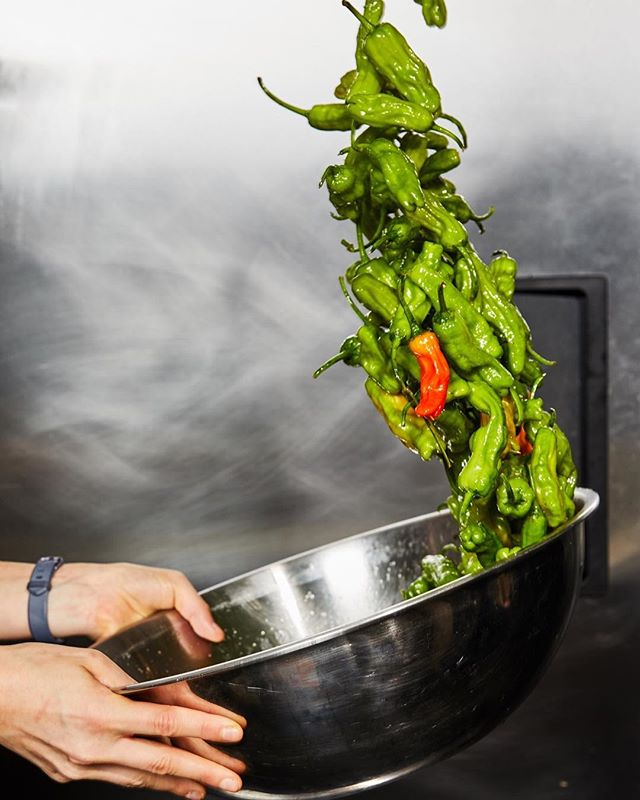 Holiday weekend recipe alert: grab some @arkfoods shishitos after work and make our newest spring dish at home. They're great with cocktails as a pre-dinner snack.⠀ ⠀ 1.  Preheat oven to 450ºF.⠀ 2.  Place shishito peppers in a large mixing bowl and drizzle with olive oil. Toss lightly to evenly coat the peppers.⠀ 3.  Place peppers on a baking tray and spread them out into a single layer. Roast in the oven until the skins are blistered and slightly charred (about 5 minutes).⠀ 4.  Remove from the oven, sprinkle with salt and a squeeze of fresh lime and enjoy.⠀ ⠀ Need a lifeline for your Passover or Easter gathering? The shishitos are also available for last minute pick-up at your local Dig...