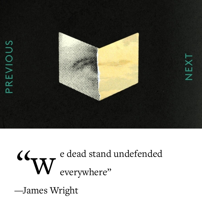 """FSG Works in Progress: """"On the Deaths and Resurrections of James Wright"""""""