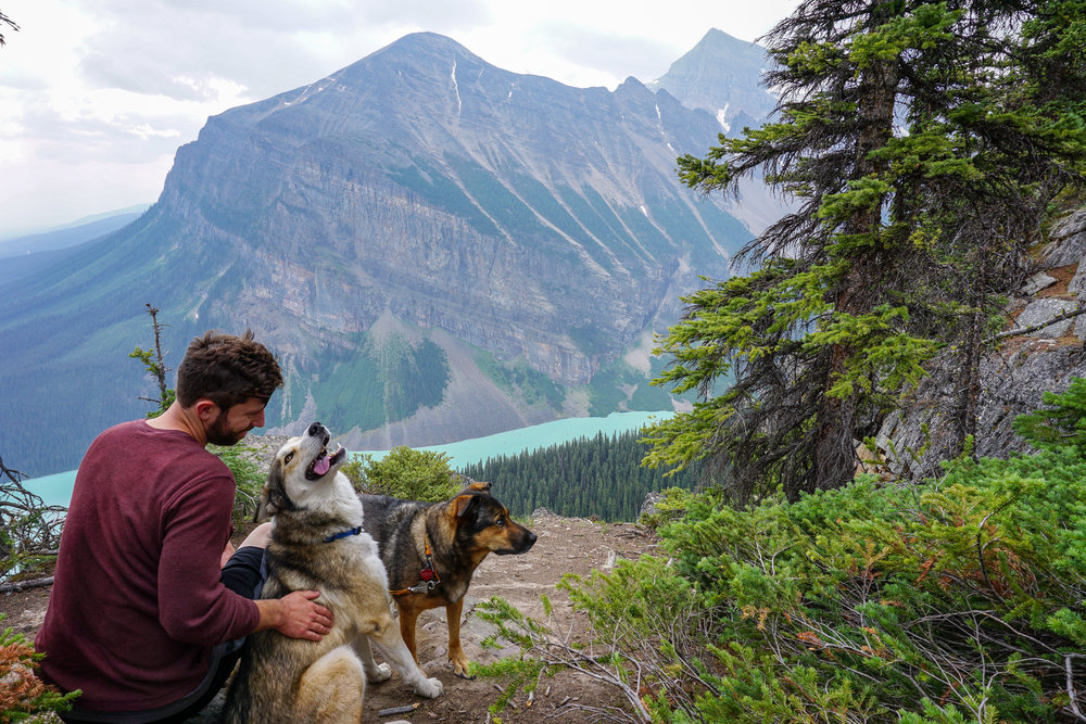 Kelsey's husband, Ryan, and her two dogs, Osa and Jasper, all smiles at Lake Louise in Alberta, Canada.