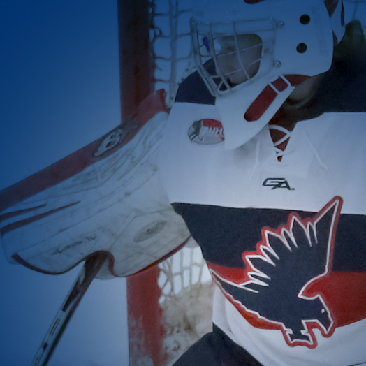 North American Hockey Academy - Branding, Vehicle Graphic Design