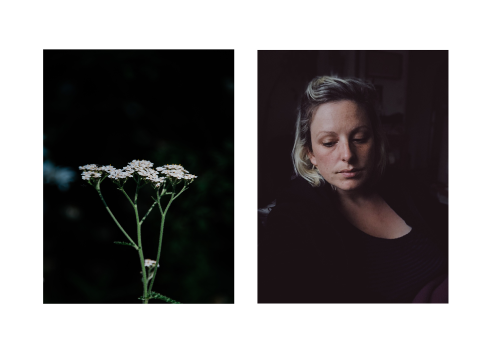 Yarrow and portrait.png