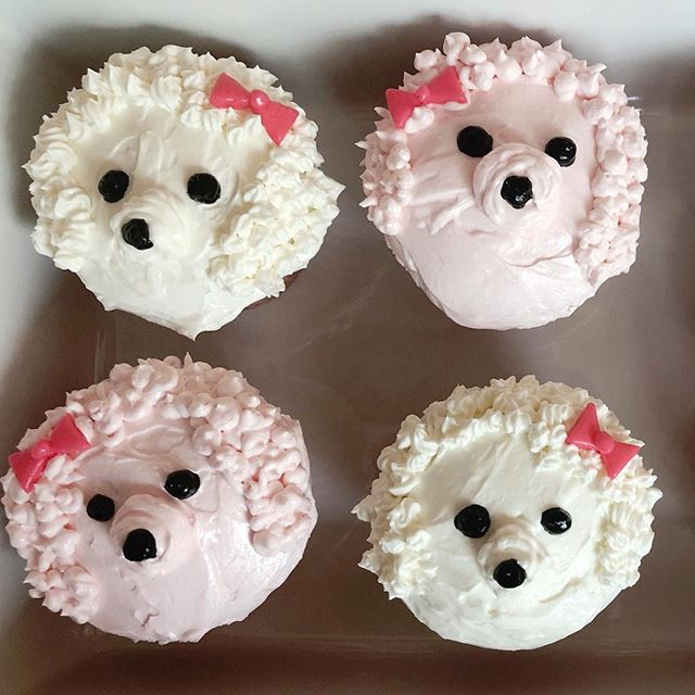 Ladybird birthday cupcakes version one. @alanajonesmann you are an inspiration. Not even close to your perfect pups but I sure had fun trying to replicate your pup-cakes!
