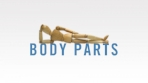 Body Parts - 8 Part Series