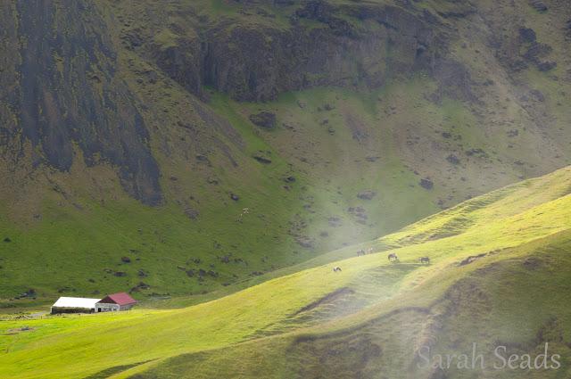 2016_07_Iceland_Web_SS-89.jpg