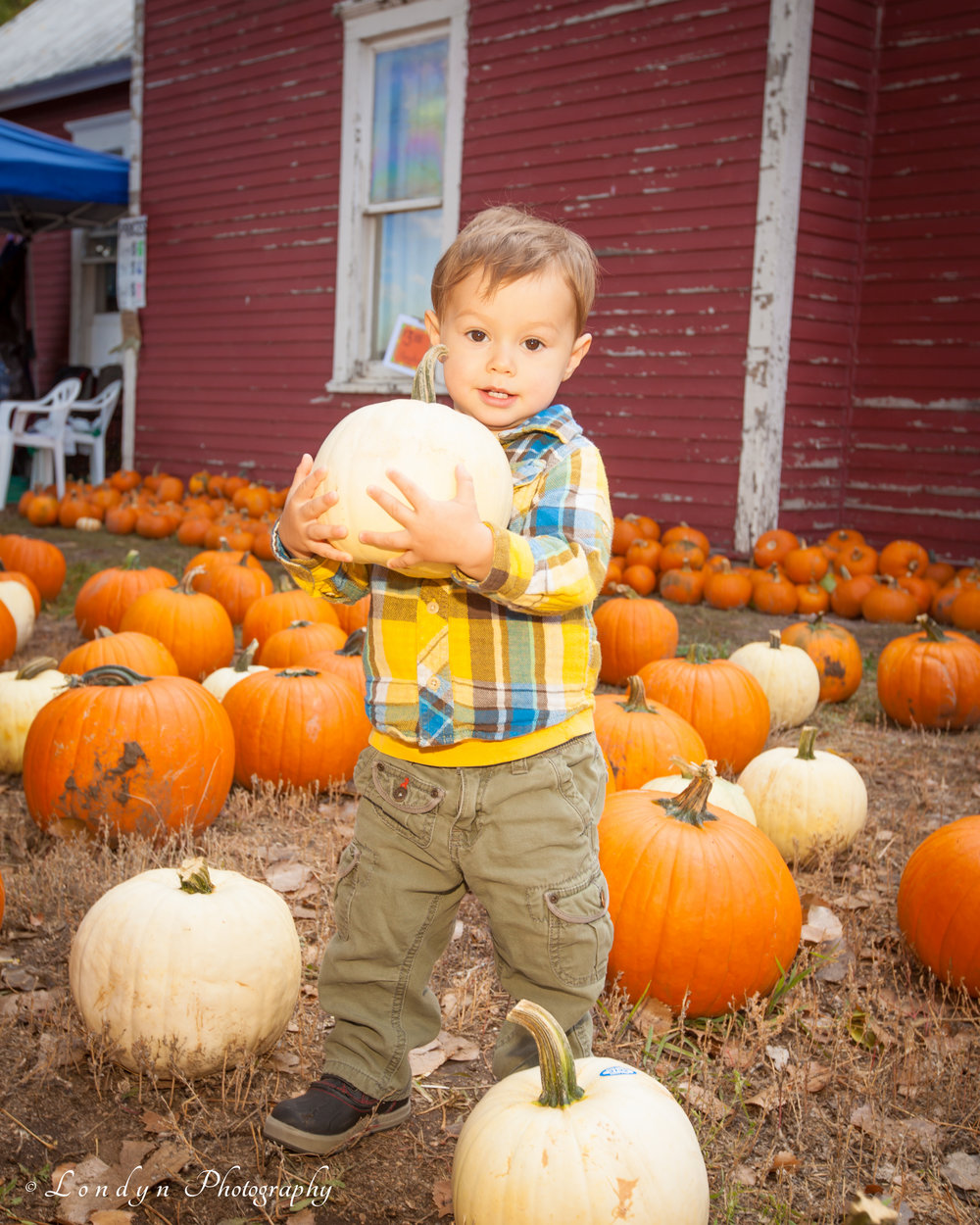 2014_11 October_WMMI_Reynolds Ranch Harvest Festival_Londyn Photography-...-1.jpg