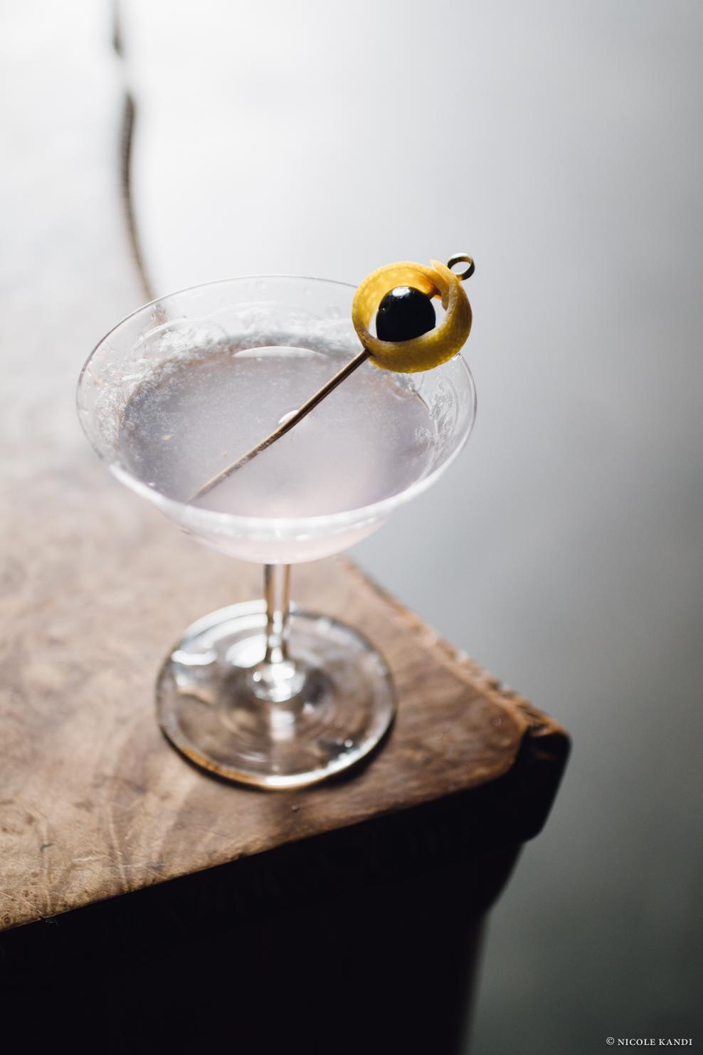 gin_aviation-3.jpg