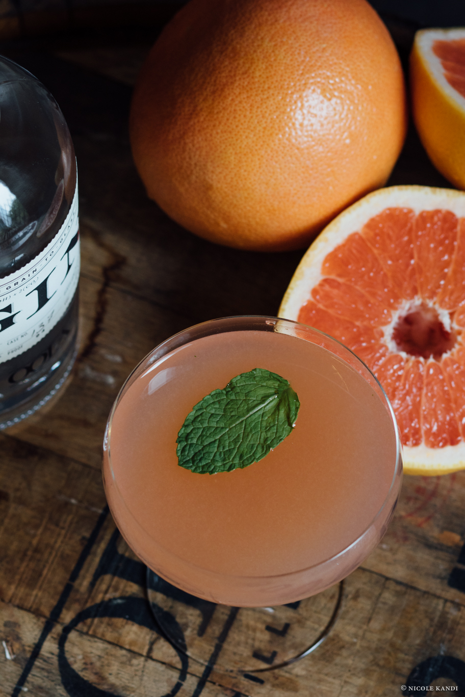 gin_bailey.jpg