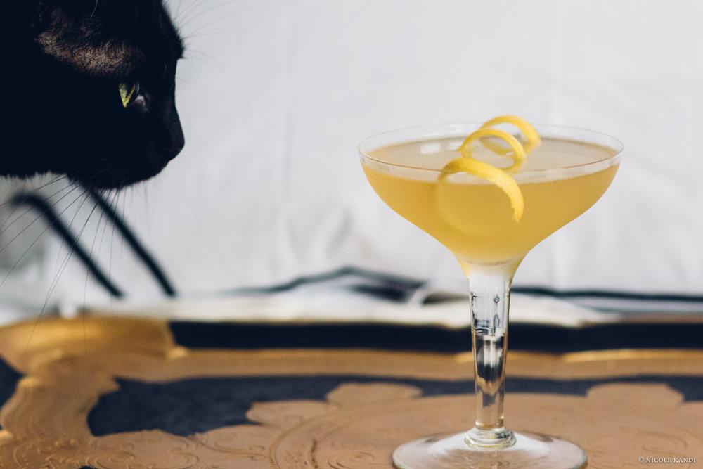 gin_bees_knees_poppycat.jpg