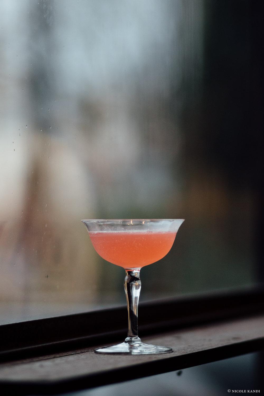 gin_jasmine-2.jpg
