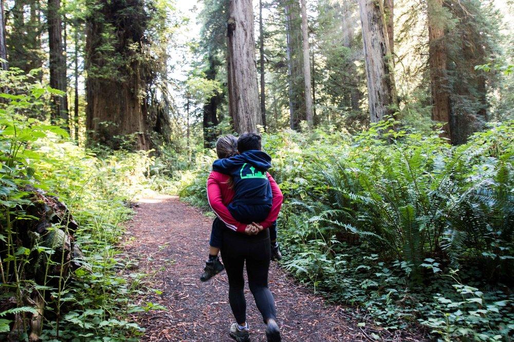 2018_Redwood_day3-34.jpg