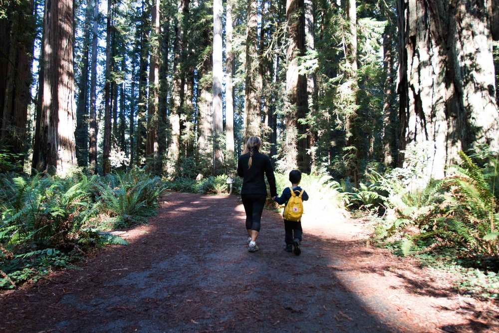 2018_Redwood-40.jpg