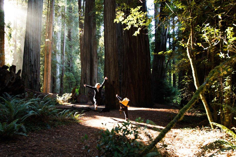 2018_Redwood-59.jpg
