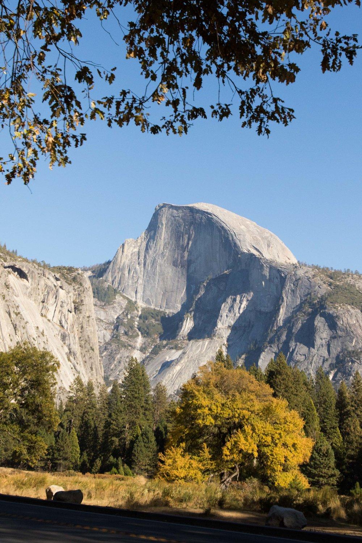 2018_Yosemite_2-4.jpg