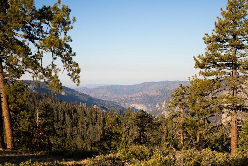2018_Yosemite_2-29.jpg