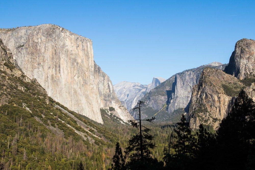 2018_Yosemite-126.jpg