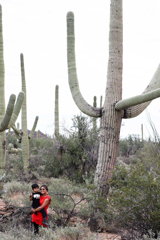 2018_Saguaro-130.jpg