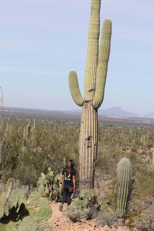 2018_Saguaro-337.jpg