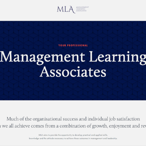 MANAGEMENT LEARNING ASSOCIATES