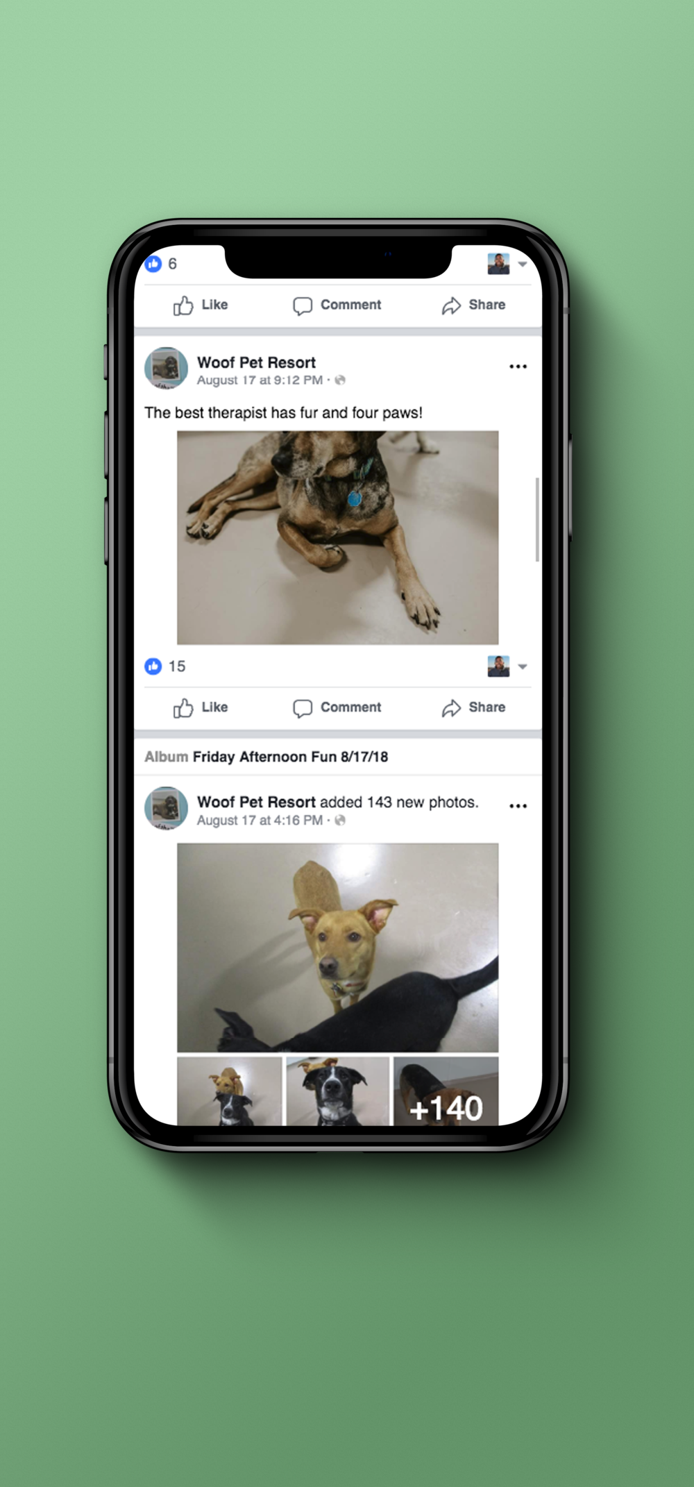 Check-in on your dog everyday on Facebook. - Our team knows how hard it can be being separated from your pup while you're at work, on vacation, or wherever else you may find yourself. That's why every dog that hangs out with us gets posted on our company Facebook page twice a day.