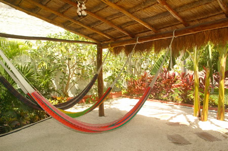 DavesHouse_hammocks_small.JPG