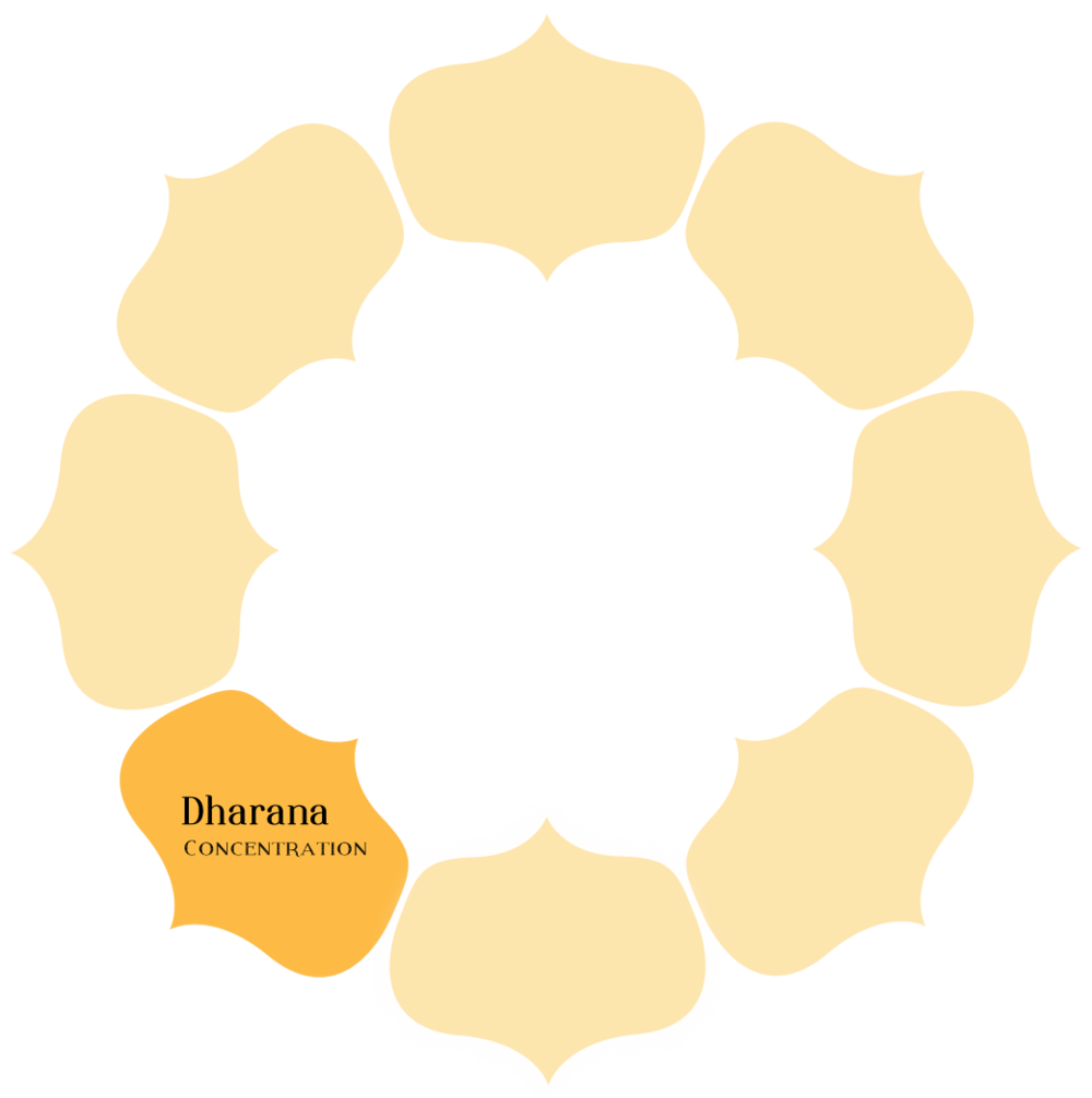 Dharana - Dharana means to develop one-pointed concentration. Without concentration there is no way to direct the tremendous potential of the mind - the energy we need for meditative inquiry is harnessed through concentrative practice.Exercises for developing concentration will be given, as well as tips for how to maintain focus once we start without becoming tense.