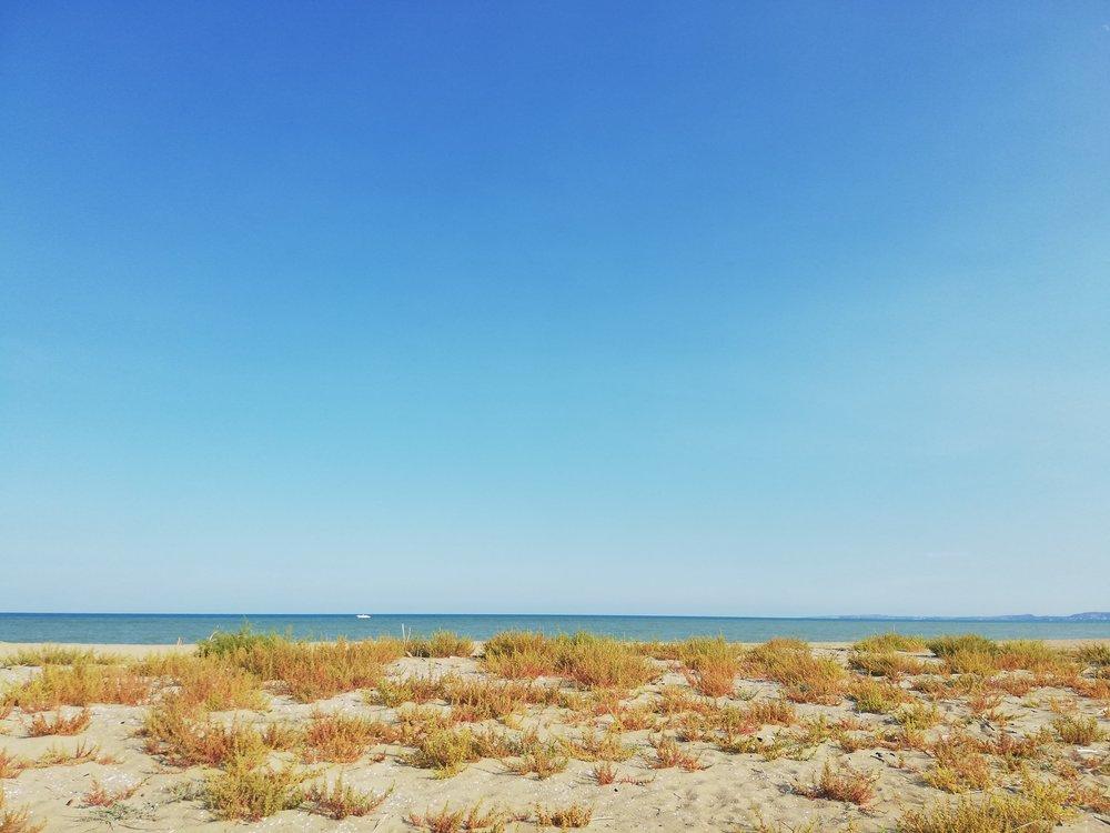 ♪ La mer qu'on voit danser le long des golfes clairs ♫