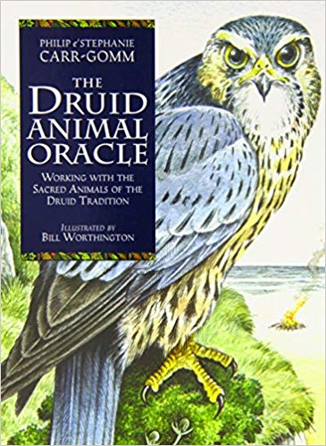 druid animal oracle deck philip and stephanie carr-gomm.jpg