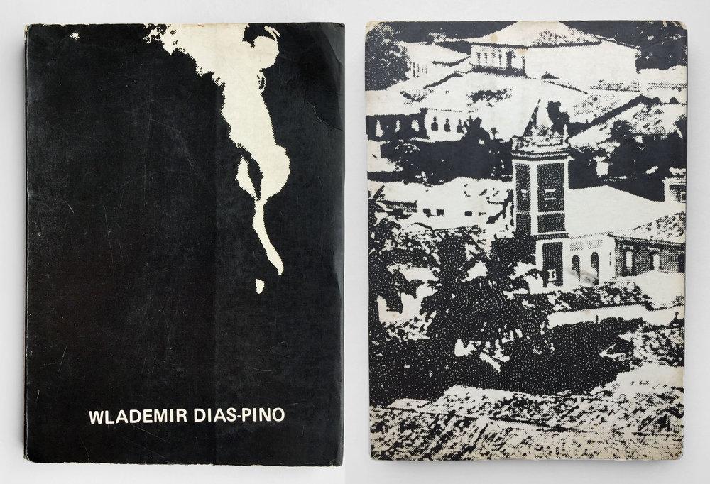 Dias-Pino_A Separação-web.jpg