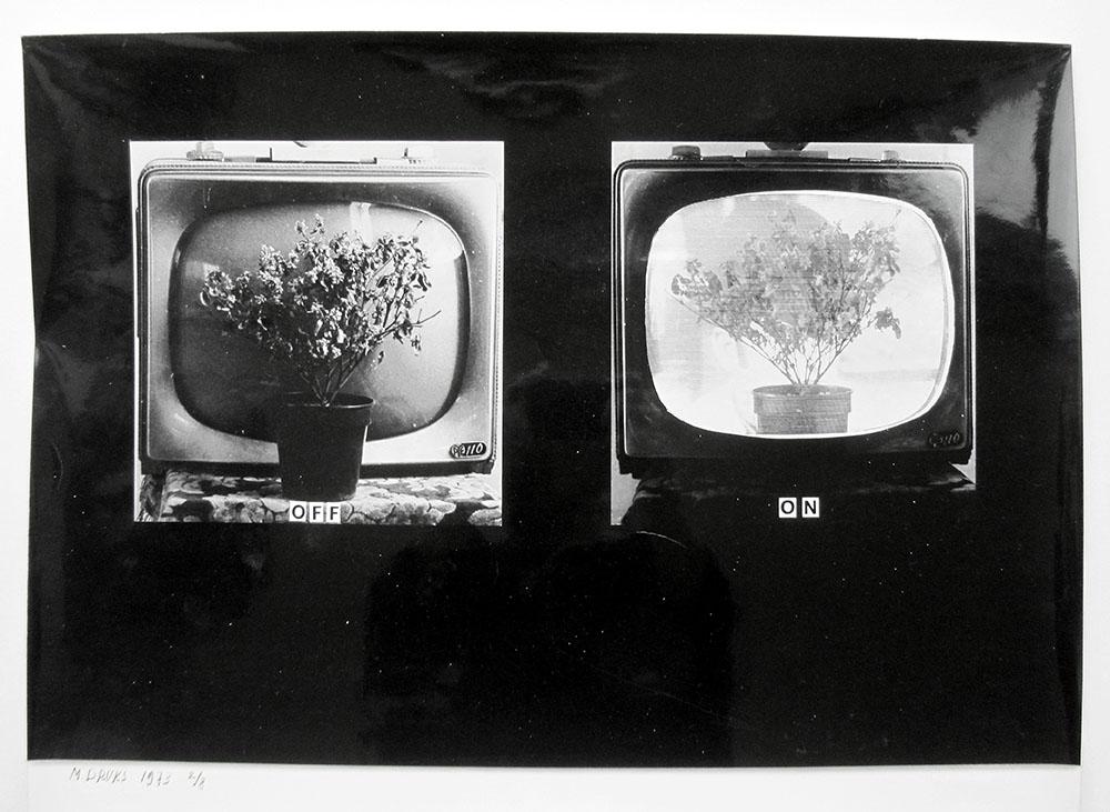 Druks_Untitled1973-web.JPG
