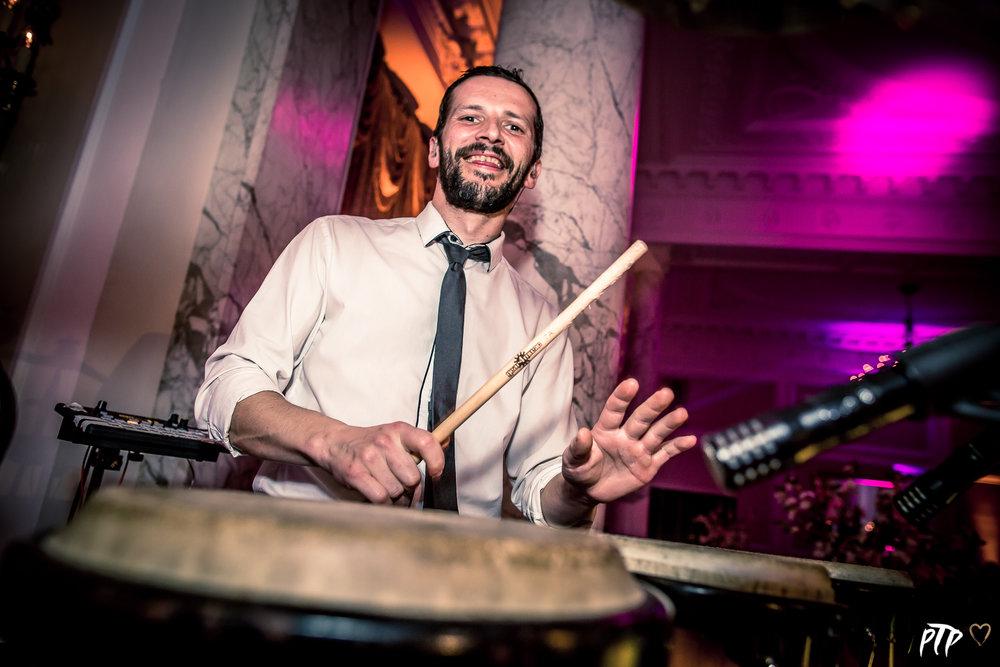 Bongo - Percussion