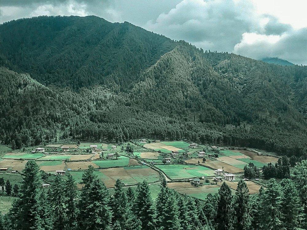 Bhutanwhattoeat.jpeg