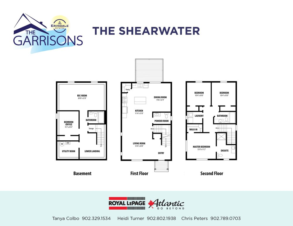 Shearwater (2).jpg