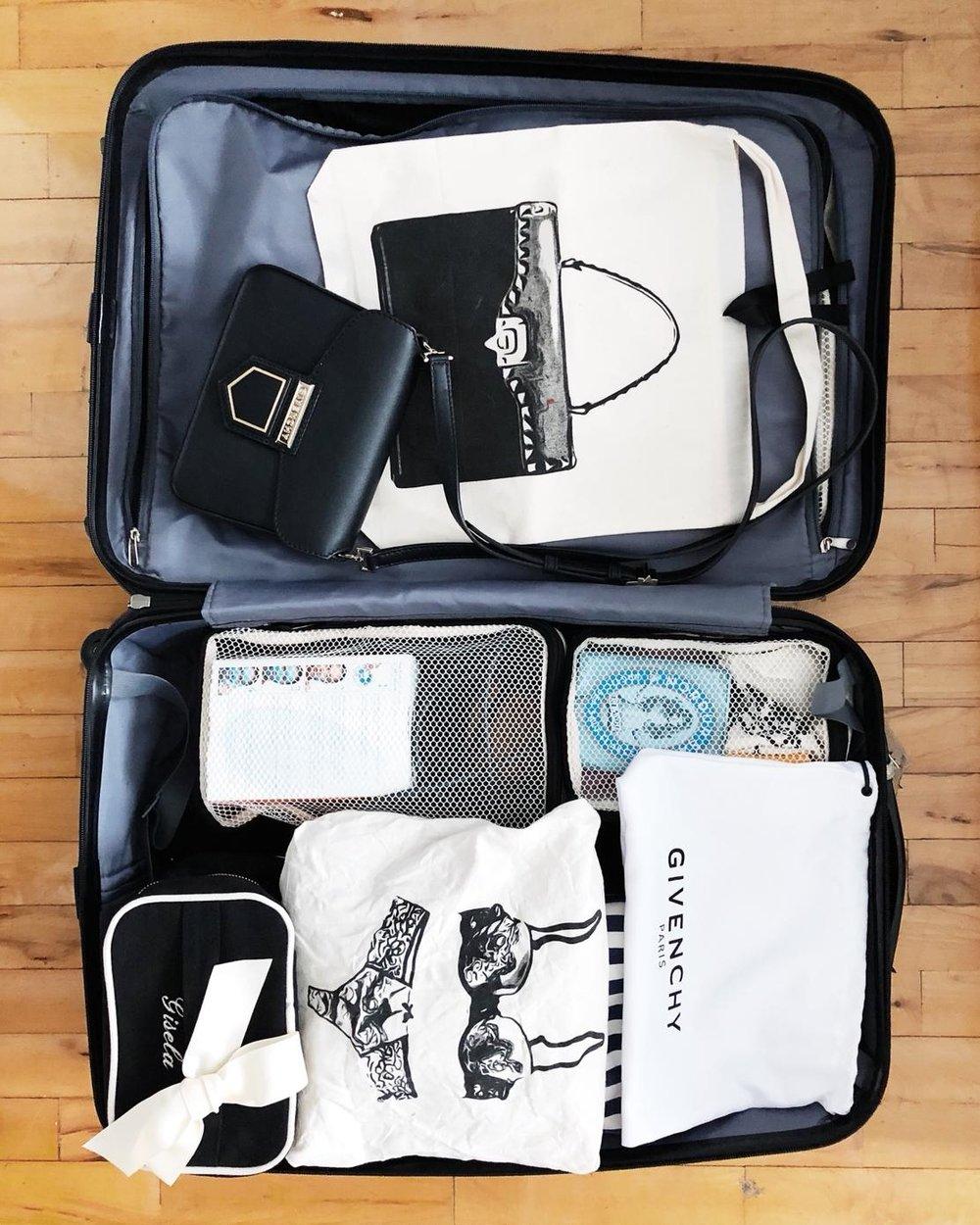 Giselas väska.jpeg